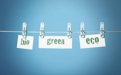 Marketing Sustainable Products: Green or Greenwashed?